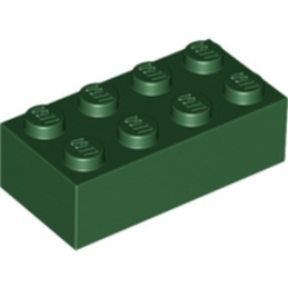 LEGO 4260493 BRIQUE 2X4 - EARTH GREEN