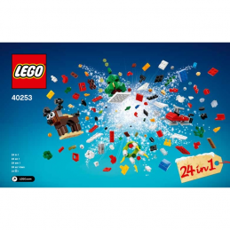 Notice / Instruction Lego 40253