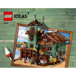 Notice / Instruction Lego IDEAS 21310