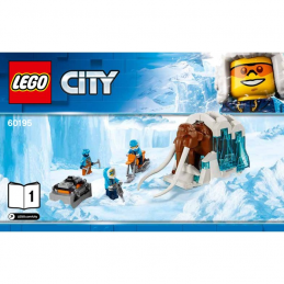 Notice / Instruction Lego City 60195