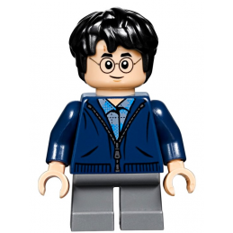 Figurine Lego® Harry Potter
