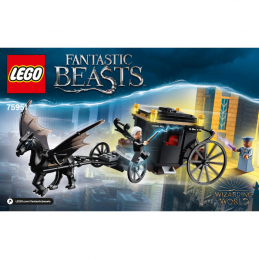 Notice / Instruction Lego Harry Potter  75951