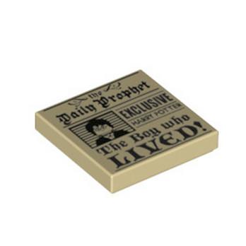 LEGO 6236629 PLAQUE IMPIME 2X2 - HARRY POTTER