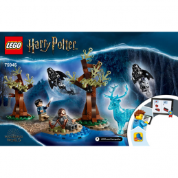 Notice / Instruction Lego Harry Potter  75945 notice-instruction-lego-harry-potter-75945 ici :
