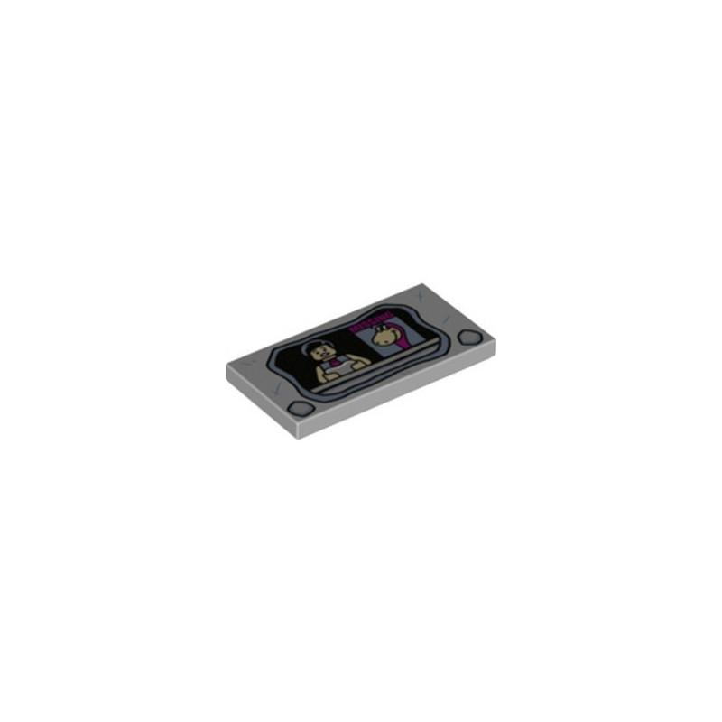 LEGO 6266185 PLAQUE 2X4 - PIERRE A FEU