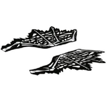 LEGO 6317259 AILES DRAGON NINJAGO X2 lego-6317259-ailes-dragon-ninjago-x2 ici :
