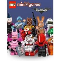 The Batman® Series Minifigures